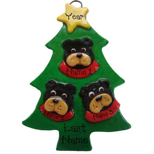 Black Bear in a Tree Family of 3